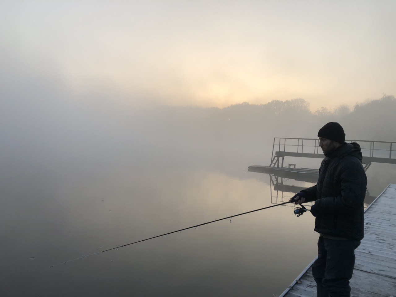 Туман на ставке