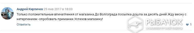 Отзыв Александра Кирпичева