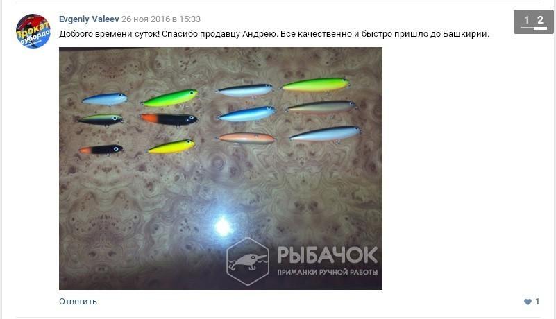 Отзыв Евгения Валеева