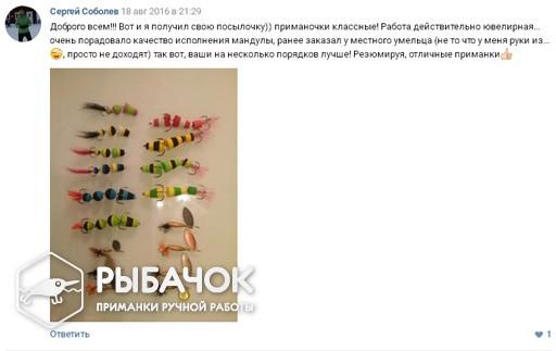 Отзыв Сергея Соболева